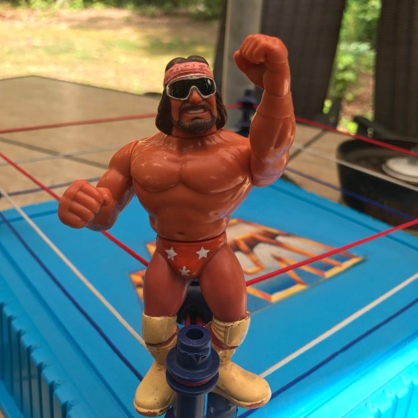 Details about  /WWE Classic Wrestling Action Figure SERIES LEGENDS WRESTLER SUPERSTARS MATTEL show original title